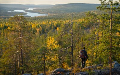 10 Things to Do in Rovaniemi in Autumn (2021)