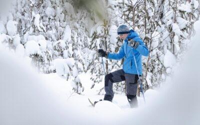 Séjour à Rovaniemi : les pièges à éviter!