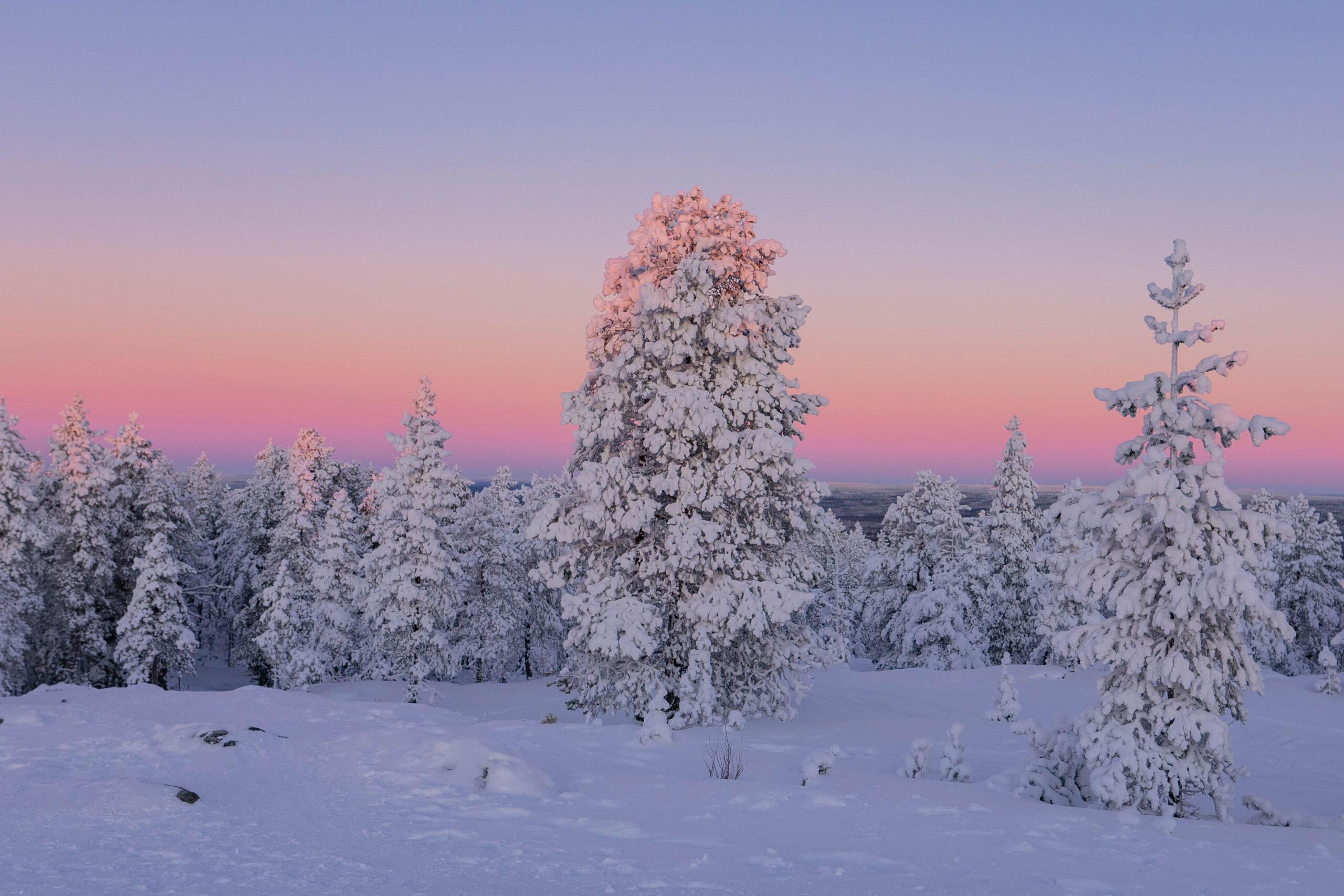 Best thing attractions Rovaniemi